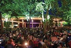 Равиня Фестивал Чикаго